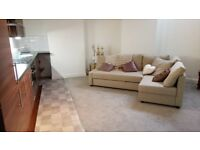 FANTASTIC BRAND NEW BASEMENT FLAT 1 BED IN FAB AREA OF LEITH
