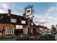 WAITER/ESS and PIZZACHEF ASSISTENT VACANCY - KINGSTON