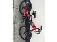 Ignite mountain bike-like new!