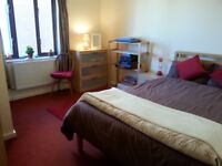 Short let room in nice flat E5/N16