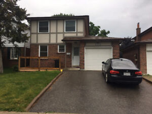 BEAUTIFUL 1 BEDROOM BASEMENT APARTMENT IN NEWMARKET