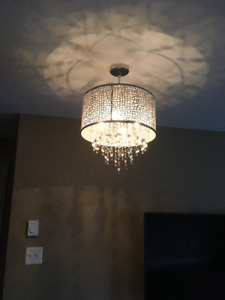 $225.00 total for 3 ceiling lights
