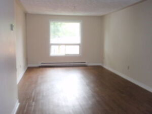 Spacious 1 Bdrm (w/ laundry & FREE Parking) -avail Aug or Sept!