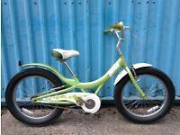 Giant Gloss Bike 1