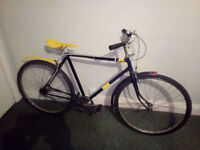 Classic oldshool vitage custom bike with cool snake skin look