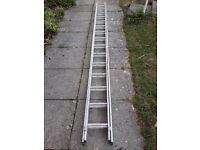 Thirty rung extending alloy ladder