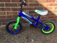 Raleigh Boys Blue & Green Bicycle