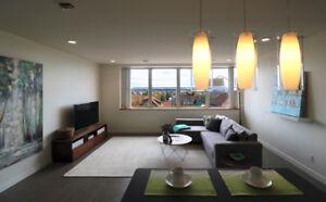 2 Bedroom, 1 bath Condominium for rent Sept 1, 2017
