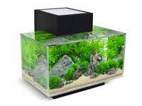 Fluval edge fish tank 23l aquarium new £80, RRP £100