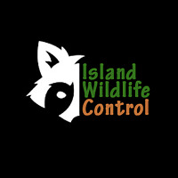 Wildlife Removal & Trapping