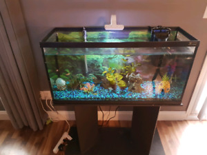 30 gal Fish tank with stand