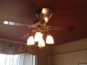 Ventilateur de plafond à vendre