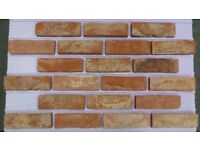 Brick tiles: Barock; red/white/black flamed color ref 451WDF, Hand molding