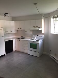 3 1/2 Apartment for rent available August