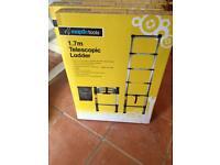 Telescopic ladders