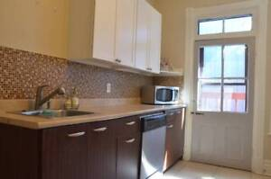 FULLY FURNISHED 5 BEDROOM IN THE HEART OF THE PLATEAU