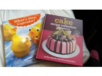 2x cake decorating books