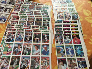 Hockey cards baseball cards