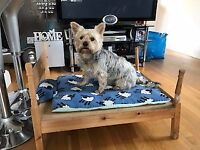 Small four post Dogs Bed