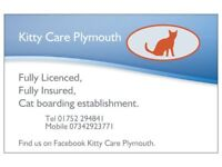 Fully Licenced And Fully Insured Cat Carer