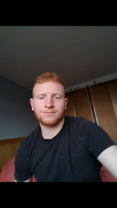 Room wanted in Cotquilam/ Langley area