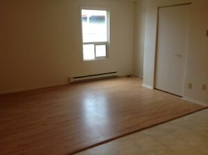 2 BR Apartment, downtown Pembroke