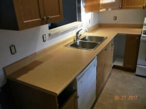 Kitchen & Bathroom Counters