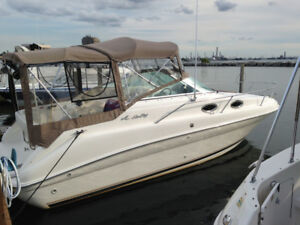 Clean Sea Ray 240