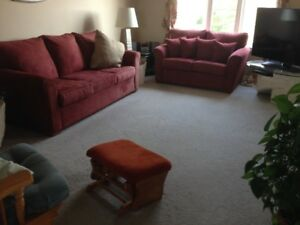 LIVINGROOM SUEDE COUCH AND LOVESEAT SET