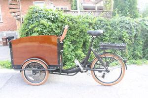 Vélo cargo bike enfants 3 roues électrique