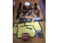 Loads of horse and rider items for sale