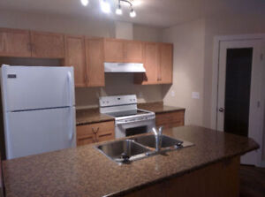 Newer 4 plex for rent in Camrose, Clean rental