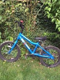 Boys Ridgeback MX16 Terrain bike