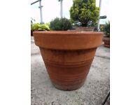 7 Terracotta Pots