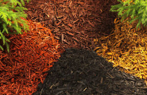 Natural and Coloured Mulch - $35/yard!