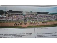 2 tickets for newcastle races ladies day