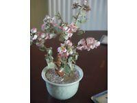 Decorative glass and ceramic plant