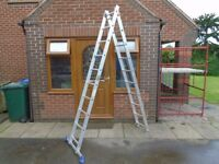 double combo ladder