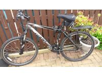 Mens Giant boulder mountain bike