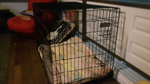 Large kennel for sale