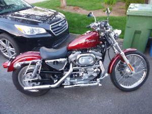 Harley-Davidson Sportster 883 Custom 2000