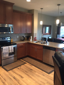 Room for Rent in Leduc- West Haven
