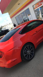2015 Ford Mustang Coupe (2 door)