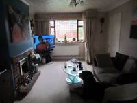 long term house wanted rent