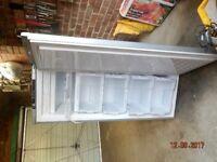 BEKO 7.0 cu ft Frost Free Tall Freezer
