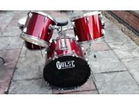 Pulse percussion acoustic drumkit