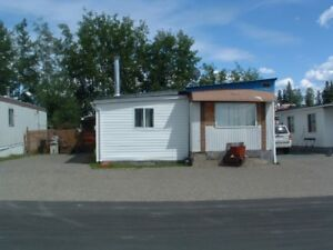 Mobile home in Meadows trailer park
