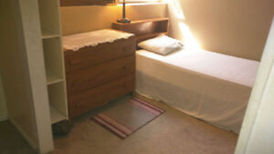 Beautiful furnished room just east of UNB campus