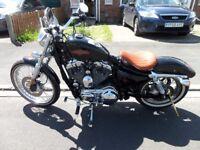 Harley Davidson 1200 sportster 2012