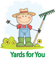 Year-round Yard Maintenance ( Lawn Mowing and Snow Removal )